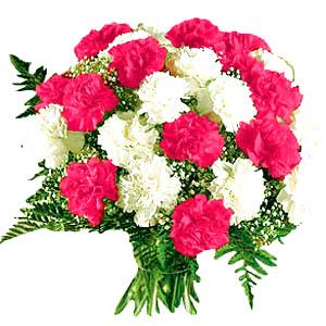 வாழ்த்தலாம் வாங்க -பேராசிரியர் சௌந்தரபாண்டியன் ஐயாவை- Flower-2